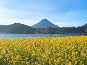 池田湖・開聞岳